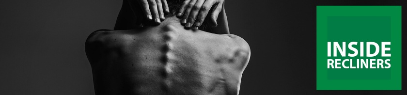 The Spine – A Guide to the Positions of the Spine when Seated