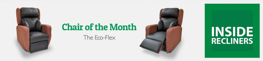 Chair of the Month – The Eco-Flex